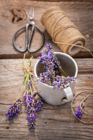 Fresh and fragrant lavender preparation for home drying Stok Fotoğraf - 112140217