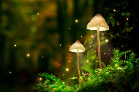 Lampade a fungo incandescente con lucciole nella foresta magica