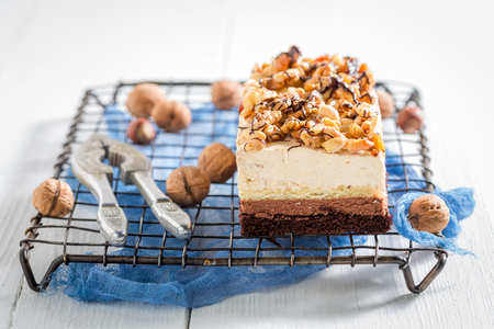 Closeup of fresh chocolate cake with walnuts and moouse 版權商用圖片 - 115249683