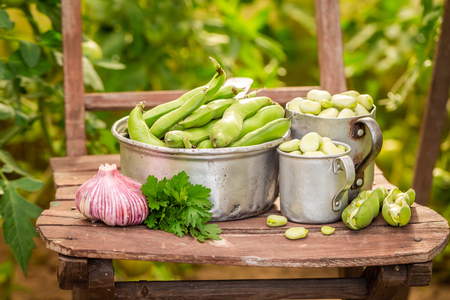 Closeup of broad beans with garlic and parsley Stok Fotoğraf - 116332803