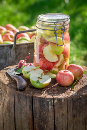 Preparation for apples compote in the summer garden