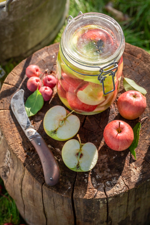 Ingredients for apples compote in the summer garden Zdjęcie Seryjne