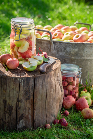 Natural canned apples in the jar in summer