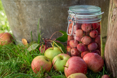 Homemade apples compote in the summer garden Stok Fotoğraf