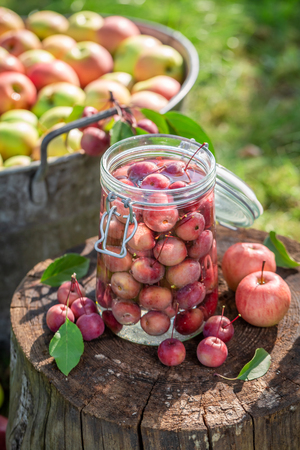 Preparation for apples compote in the jar in summer