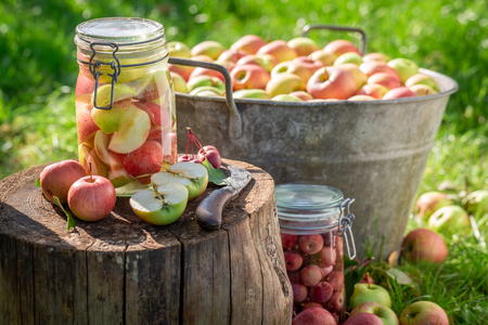 Ingredients for apples compote in the jar in summer