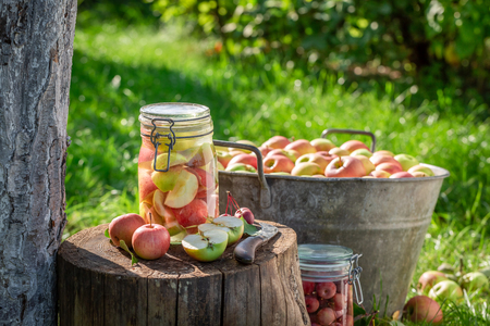 Homemade apples compote in the jar in summer Banco de Imagens - 117336323