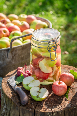 Preparation for canned apples in the summer garden Banco de Imagens - 117336327