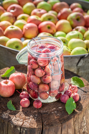 Ingredients for canned apples in the summer garden Banco de Imagens - 117336341