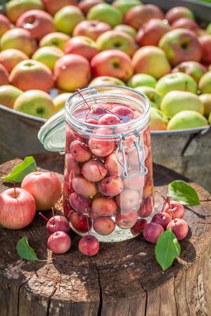 Ingredients for canned apples in the summer garden Banco de Imagens