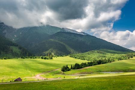 Green valley and cloudy Tatra Mountains in Slovakia Stockfoto