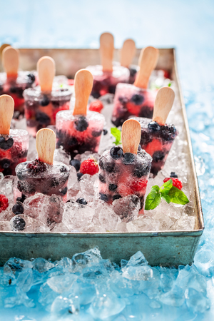 Sweet berry fruits ice cream on cold ice