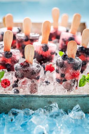 Tasty berry fruits ice cream on cold ice