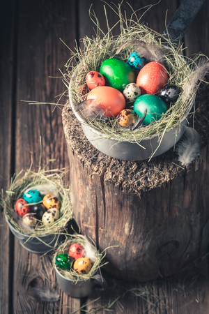 Colorful eggs for Easter on hay in metal cups Stock Photo