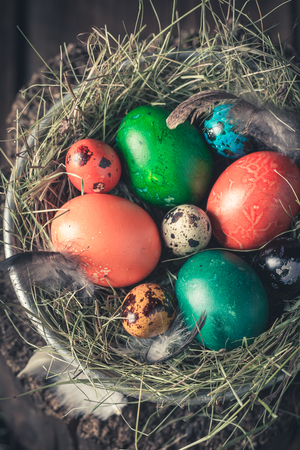Closeup of Easter eggs with feathers and hay