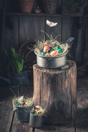 Falling feather on a Easter eggs  in wooden shack