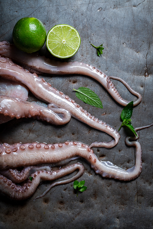 Top iew of preparing fresh octopus on cold metal table