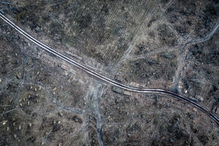 Aerial view of horrible deforestation. harvesting a forest, Europe 写真素材