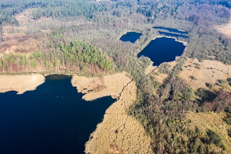 Aerial view of beautiful lake and forest, Poland