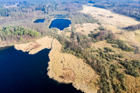 Aerial view of stunning lake and forest, Poland 스톡 콘텐츠