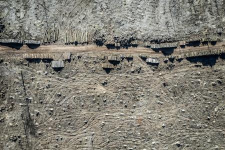 Flying above terrible deforestation forest for harvesting, Europe Stock fotó