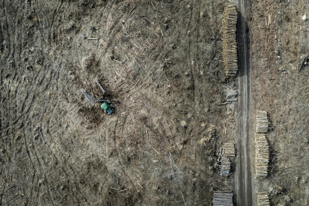 Flying above horrible deforestation. harvesting a forest, Europe