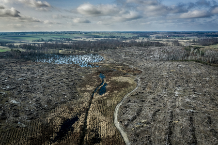 Aerial view of horrible deforestation, destroyed forest for harvesting, Europe