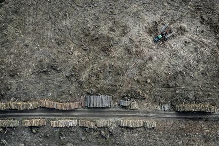 Flying above terrible deforestation, destroyed forest for harvesting, Poland