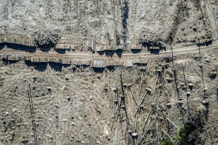 Flying above horrible deforestation, logging, environmental destruction, Europe