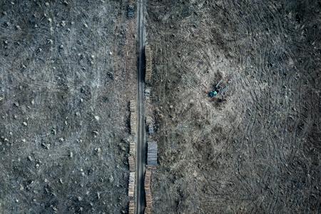 Aerial view of shocking deforestation, destroyed forest, Europe