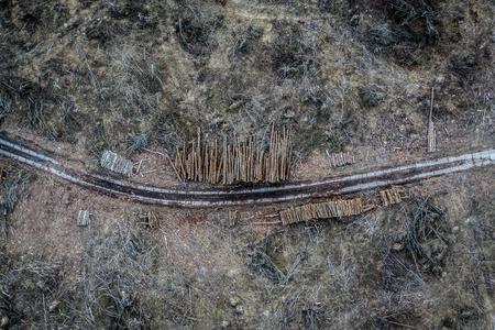 Flying above shocking deforestation, environmental destruction, Europe