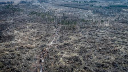 Flying above shocking deforestation, environmental destruction, Poland