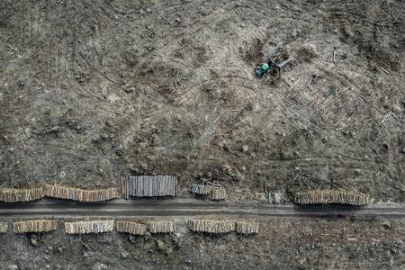Flying above shocking deforestation, destroyed forest, Europe