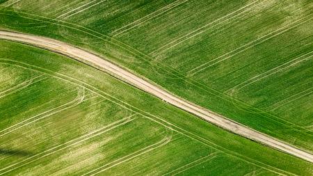 Aerial view of green field in spring Stok Fotoğraf