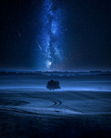 Milky way over filed with one tree in summer Stock Photo