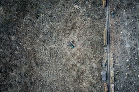 Flying above shocking deforestation, destroyed forest, Poland Stock Photo