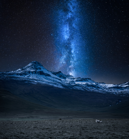 Sheeps in the mountains at night and milky way, Iceland