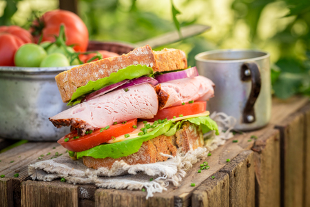 Fresh sandwich with lettuce, tomato and ham in greenhouse