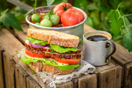 Tasty sandwich with tomato, ham and cheese in greenhouse Banco de Imagens