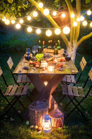 Preparation for supper with cheese, red wine in illuminated garden
