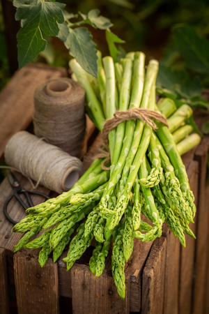 Tasty and fresh green asparagus on wooden box 免版税图像