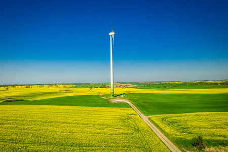 Green rape fields and wind turbine in Poland, aerial view Reklamní fotografie