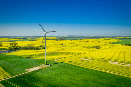 Yellow rape fields and wind turbine, aerial view Reklamní fotografie