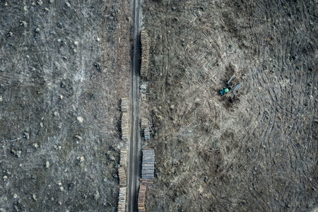 Flying above shocking deforestation, destroyed forest in Europe
