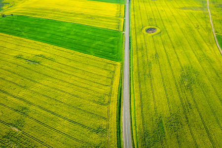 Flying above green and yellow rape fields in sunny day Reklamní fotografie