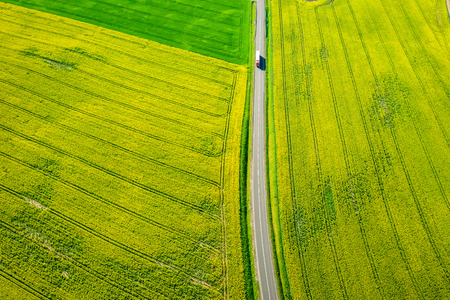 Flying above yellow and green rape fields in sunny day Standard-Bild - 122087072