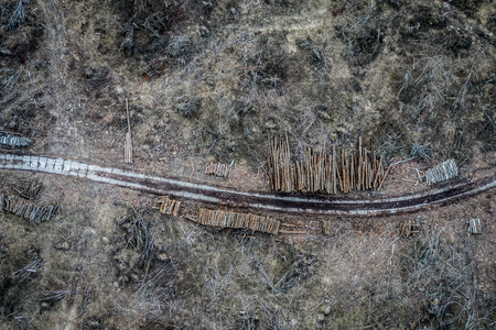 Flying above shocking deforestation in Poland, environmental destruction Stock fotó - 122086796