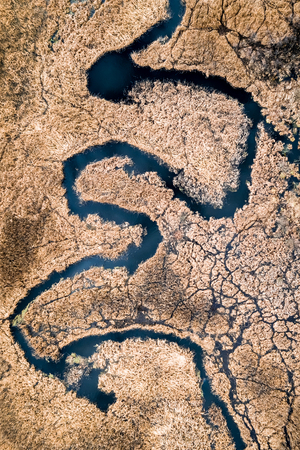 Small river and brown swamps, aerial view, Poland