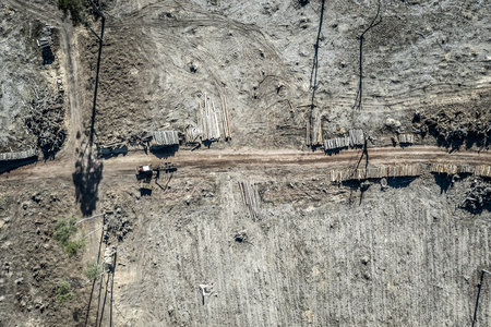 Flying above horrible deforestation, destroyed forest for harvesting Stock fotó - 122086540
