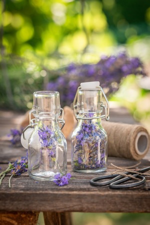 Freshly harvested lavender in small bottles in summer